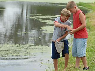 Frogfishing